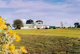 Lucindale Country Club - St Kilda Accommodation
