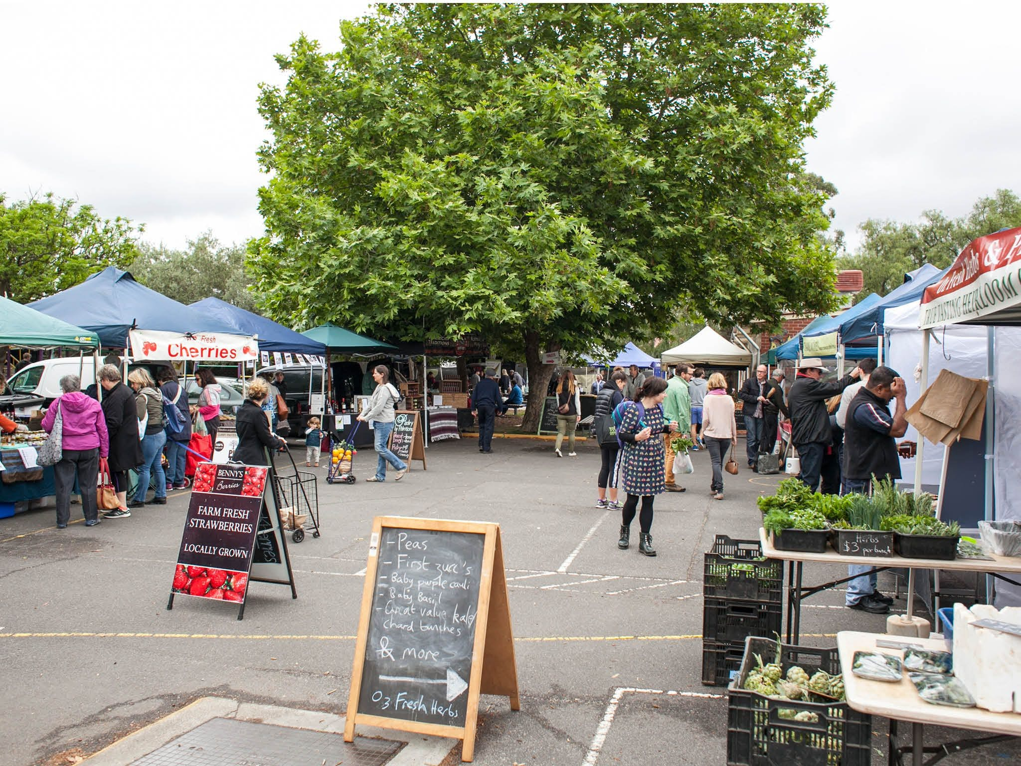 Alphington Farmers' Market - St Kilda Accommodation