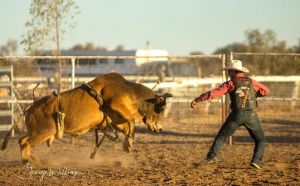Walgett Charity Bushman's Carnival Rodeo and Campdraft - St Kilda Accommodation