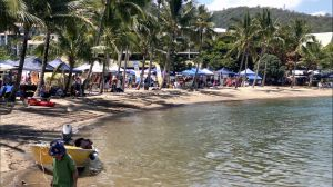 Lions Airlie Beach Community Markets - St Kilda Accommodation