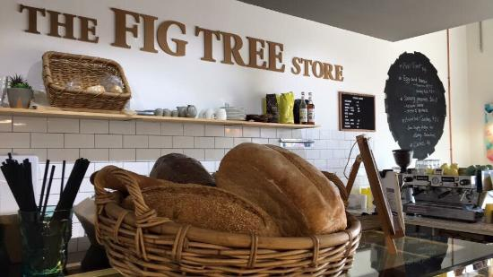 The Fig Tree store - St Kilda Accommodation