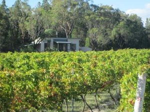 Just Red Wines Cabins - St Kilda Accommodation