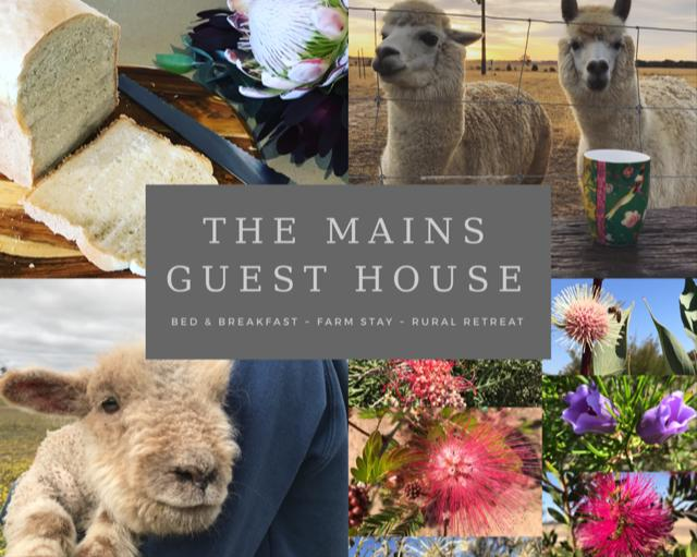 The Mains Guest House - St Kilda Accommodation