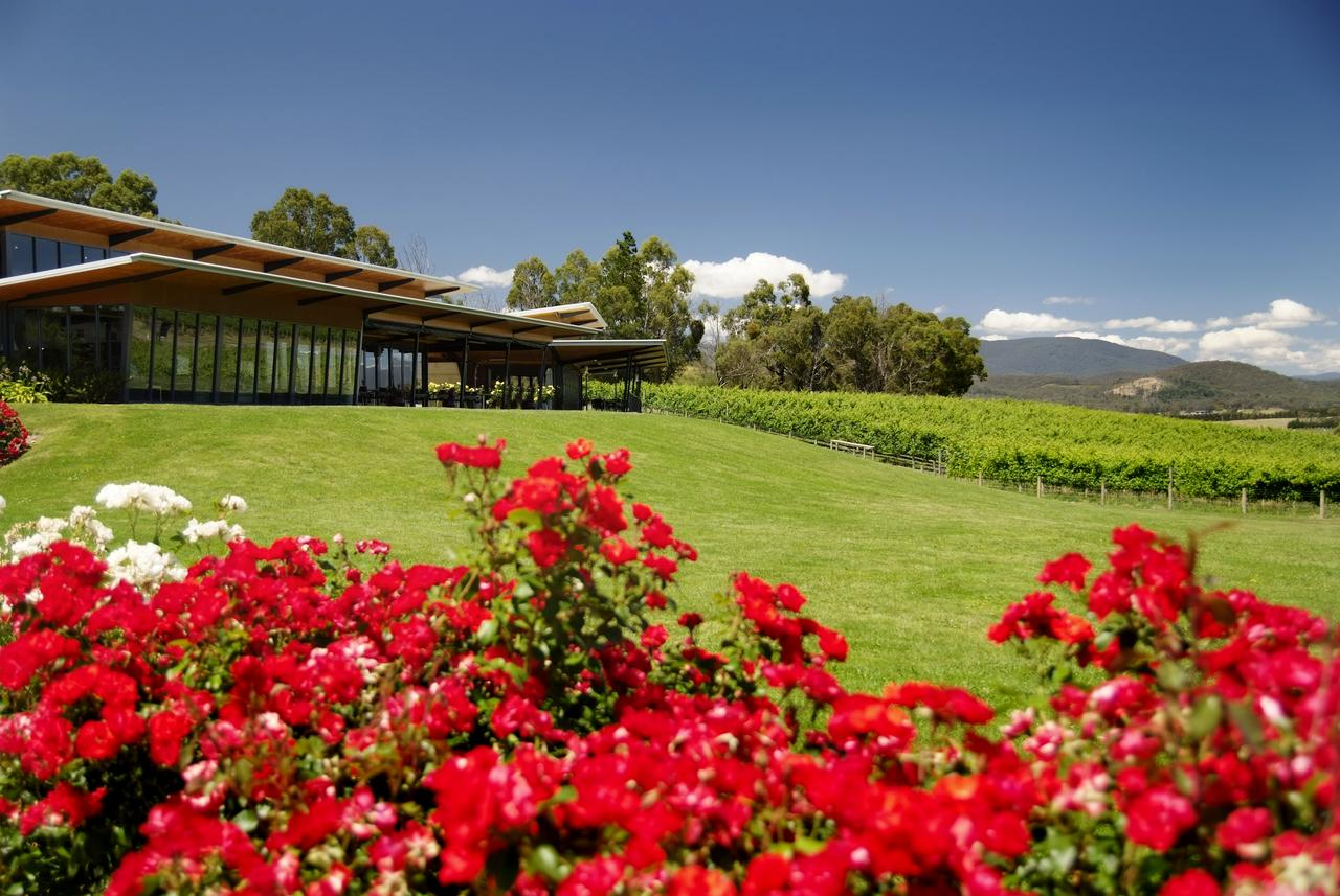 Balgownie Estate Vineyard Resort  Spa - St Kilda Accommodation
