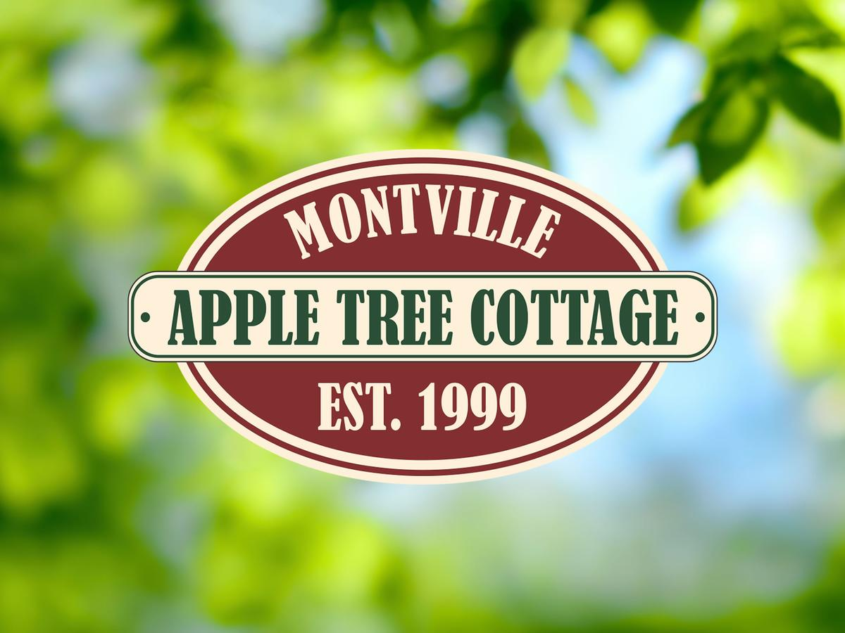 Apple Tree Cottage and Studio - St Kilda Accommodation